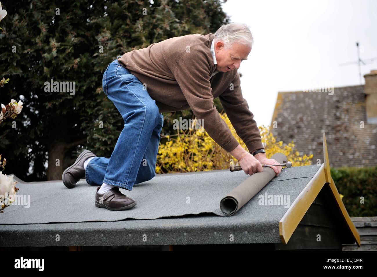 a retired man re felting a shed roof uk stock photo. Black Bedroom Furniture Sets. Home Design Ideas