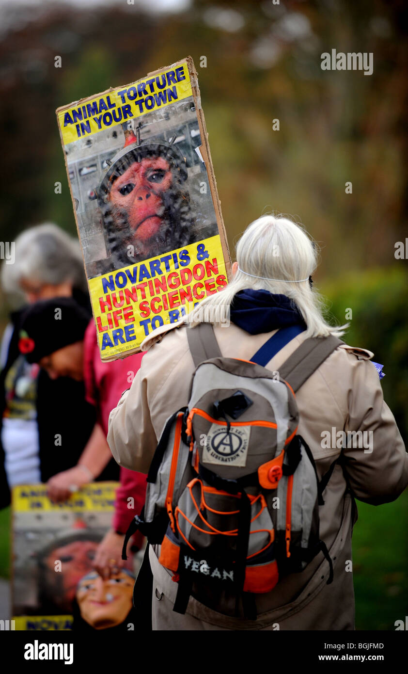 Animal rights protesters at a demo in Horsham against Novartis and Huntington Life Sciences - Stock Image