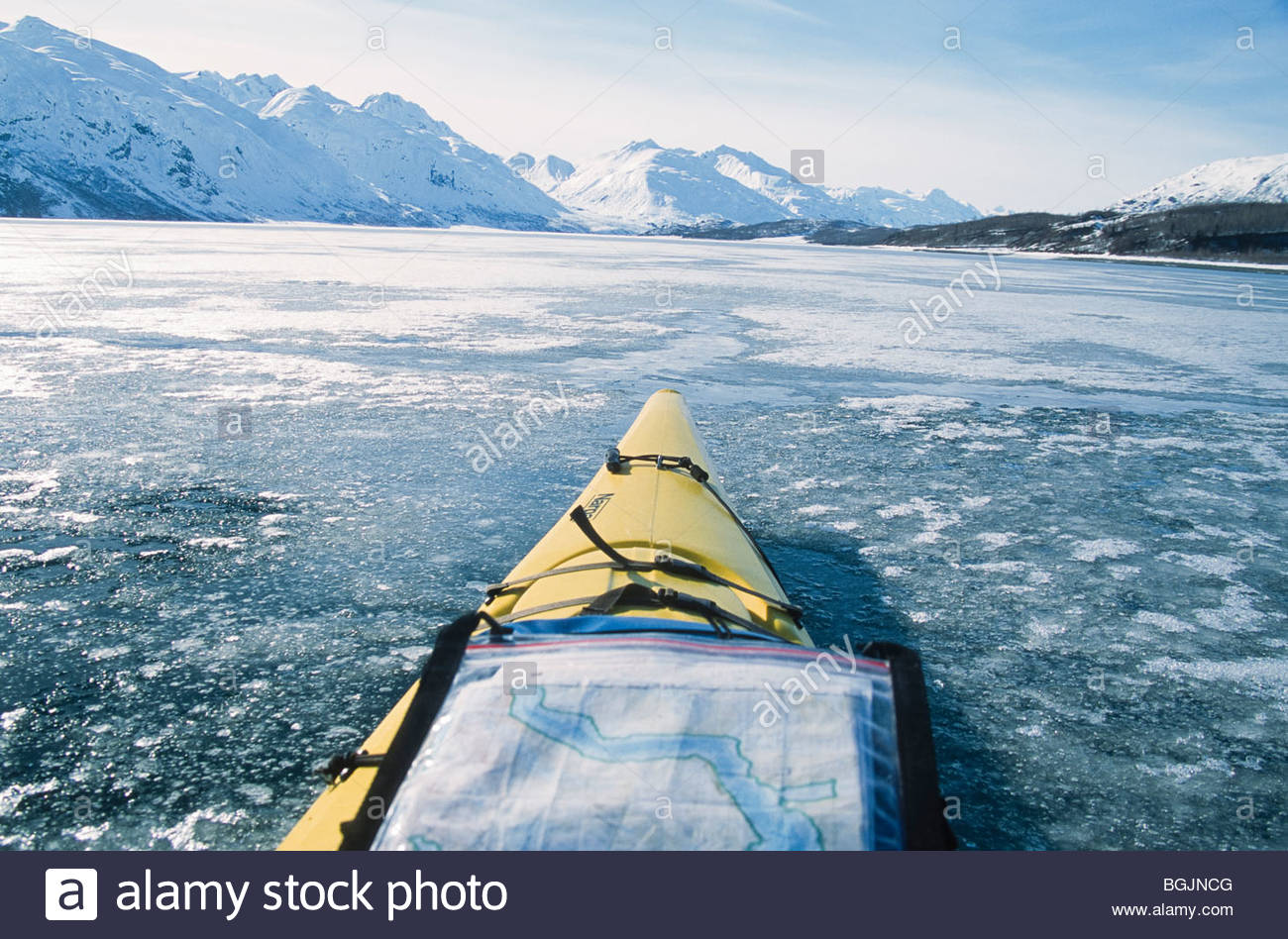 Alaska. Glacier Bay NP. Using a USGS Topo map to navigate an icy path in Glacier Bay. - Stock Image