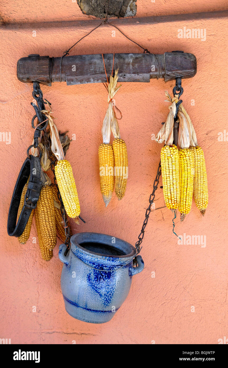 Arrangement of Ears of corn or maize, harness and stoneware hanging on a wall, Eguisheim, Haut-Rhin, Alsace, France - Stock Image
