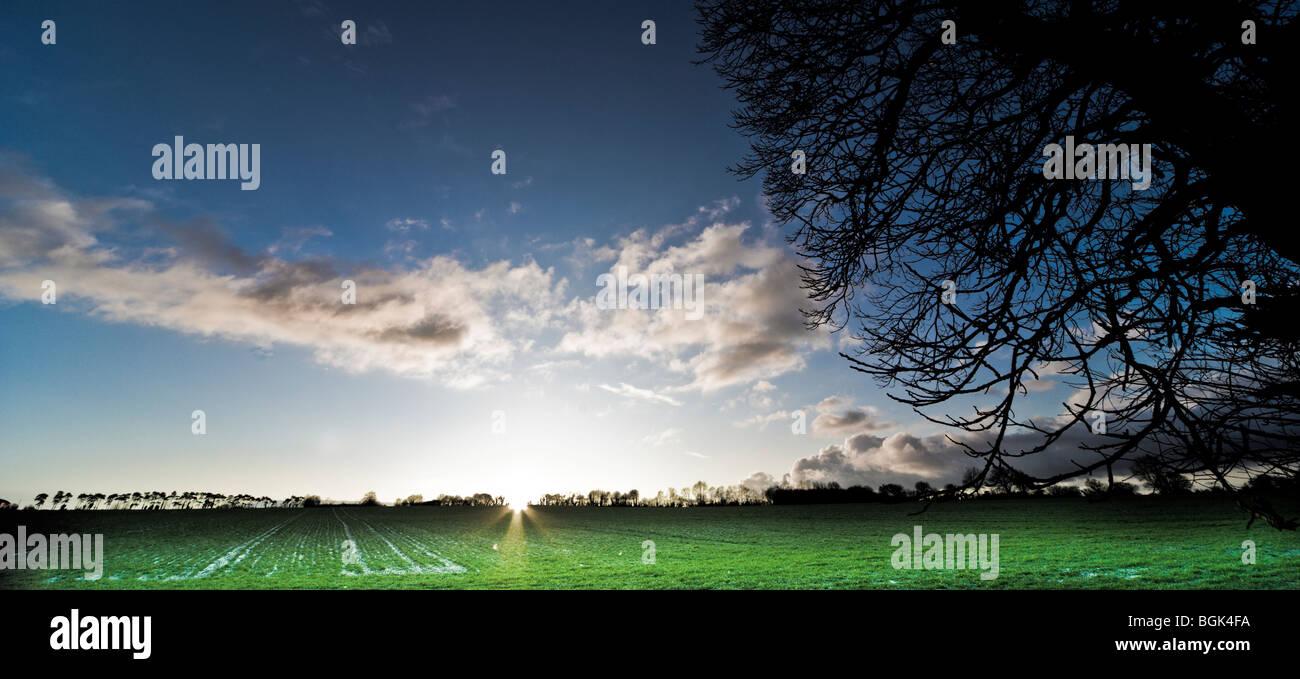 Sun set over a winter field Stock Photo