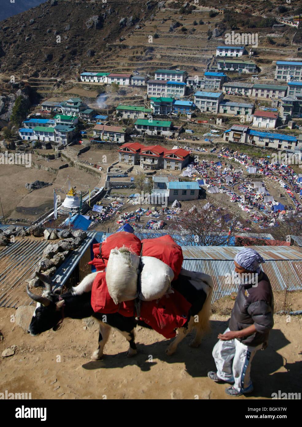 Yak Herder Above Namche Bazaar Himalayas Khumbu Region Nepal Asia - Stock Image