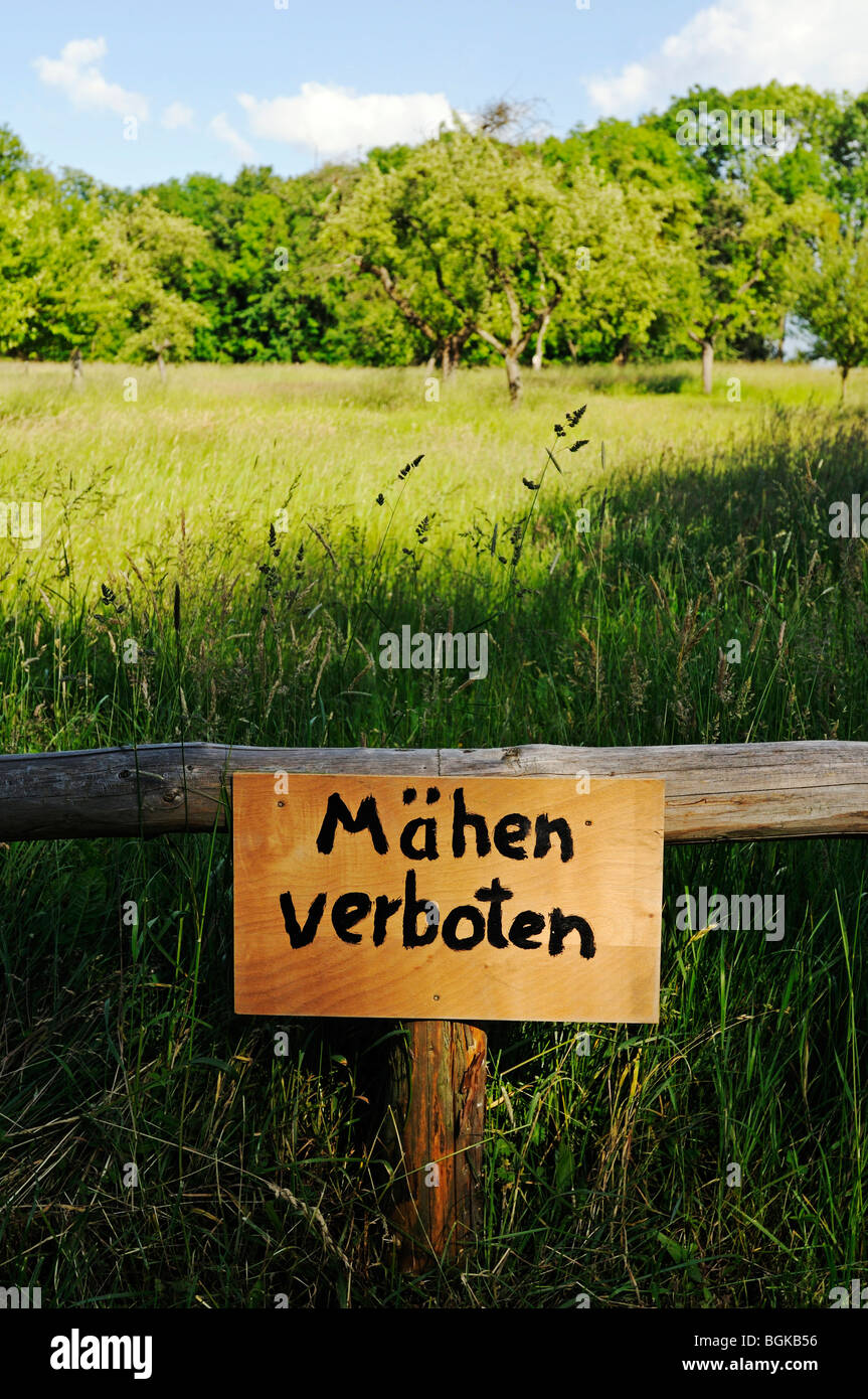Sign 'Maehen verboten', no mowing, landscape in the palace gardens of Schloss Basedow castle, designed by - Stock Image