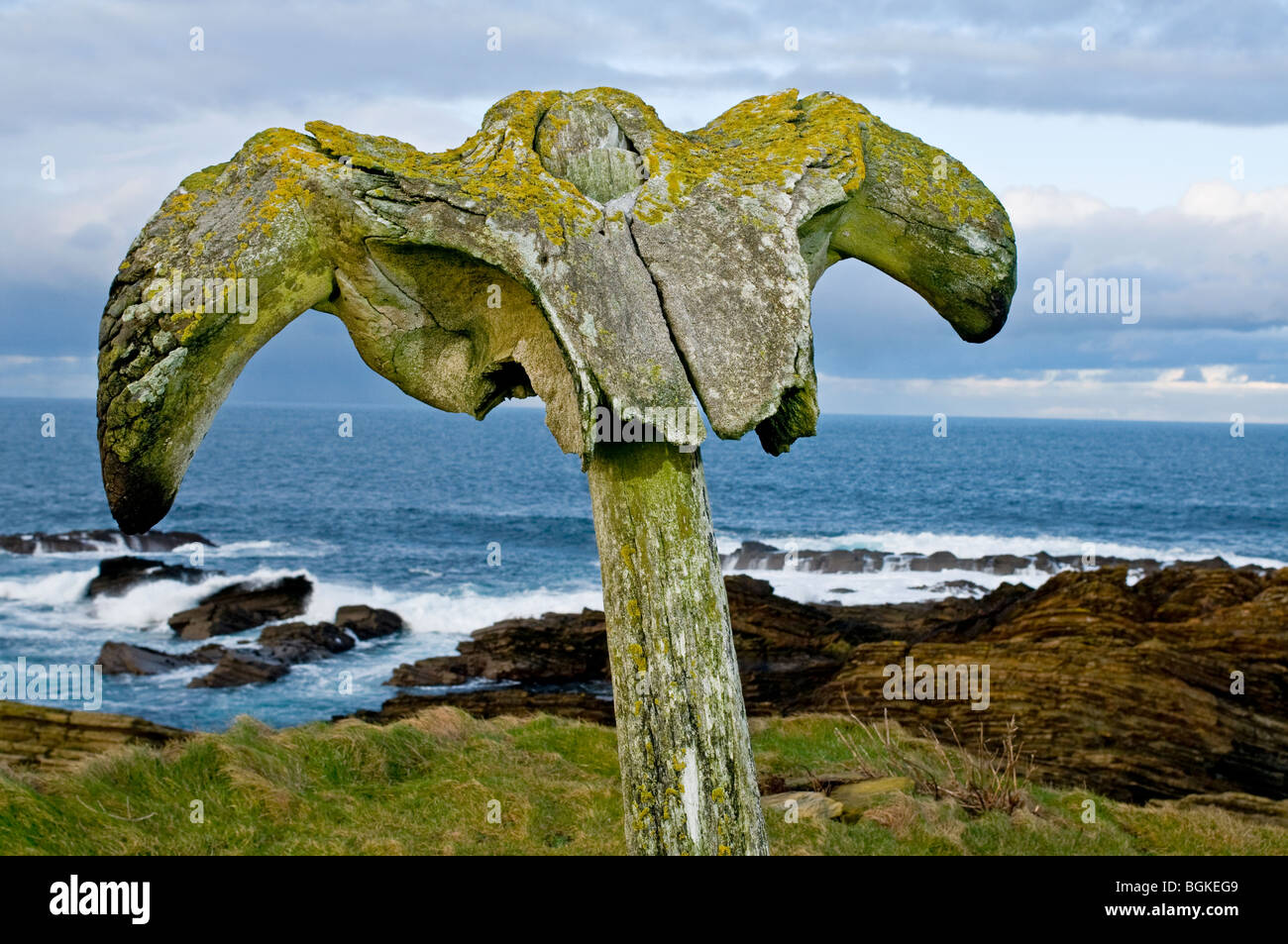 The Birsay whalebone erected on the coastal path from the remains of a beached whale c. 1876. - Stock Image
