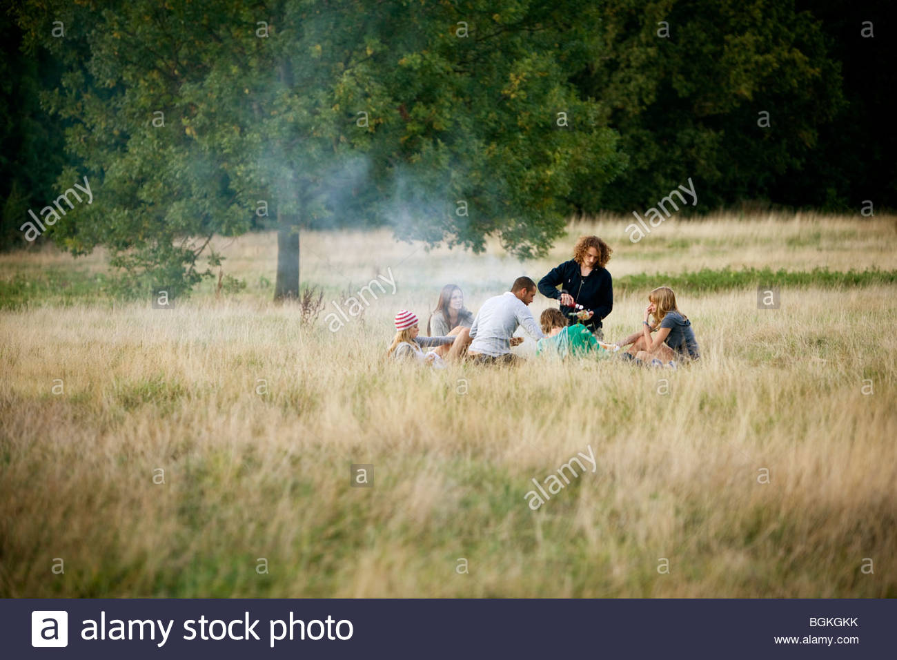 A group of young friends having a barbecue in a field - Stock Image