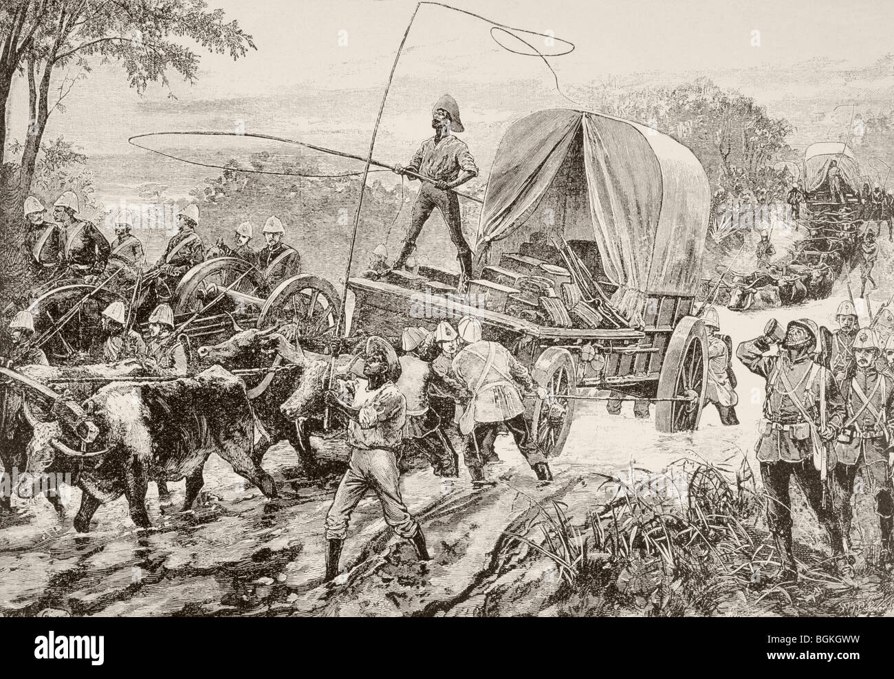 British army supply wagons drawn by oxen teams cross a river during the Anglo-Zulu War. - Stock Image