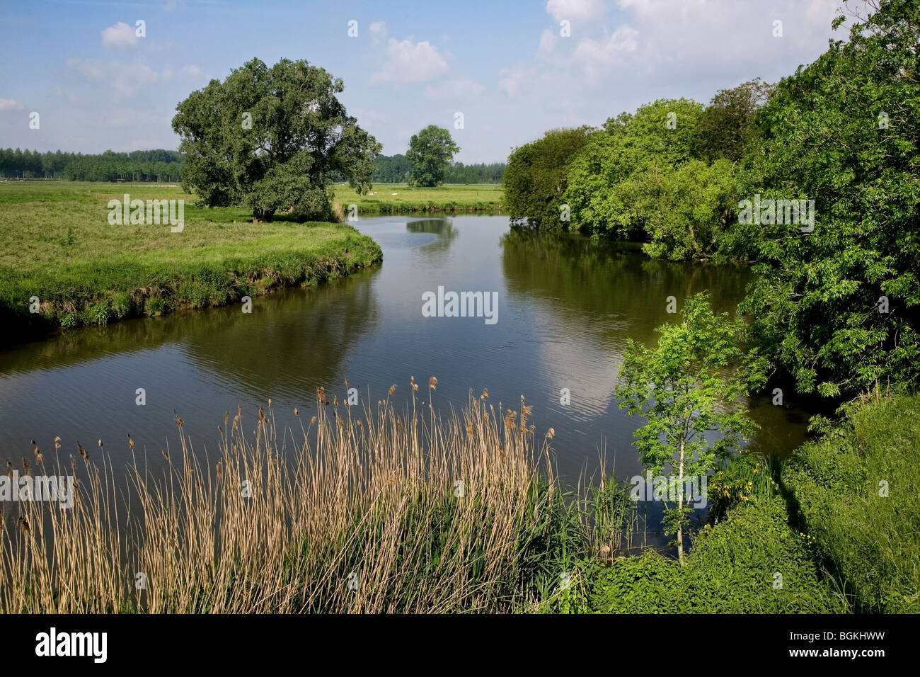 Meadows and the river Lys at Sint-Martens-Latem, Belgium Stock Photo