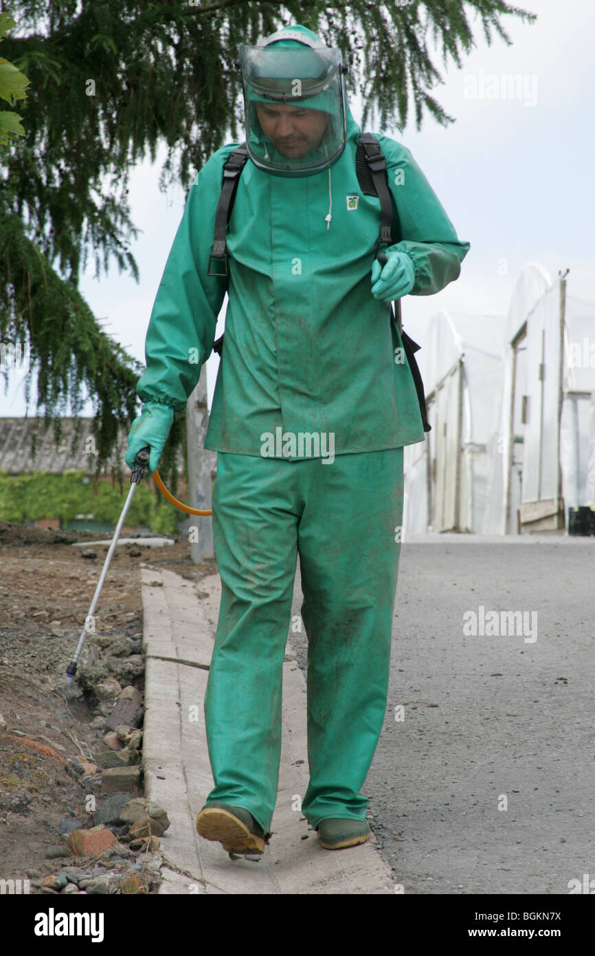 A Worker Spraying Weeds With Pesticides - Stock Image