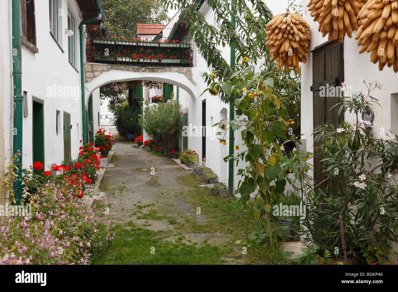 Alley in Moerbisch am See, Neusiedler See, Burgenland, Austria, Europe Stock Photo