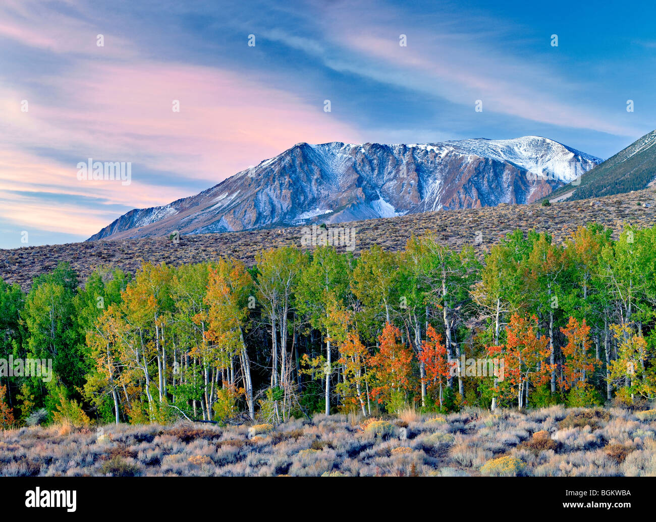 Eastern Sierra Mountains with sunrise and fall colored aspens and snow. - Stock Image