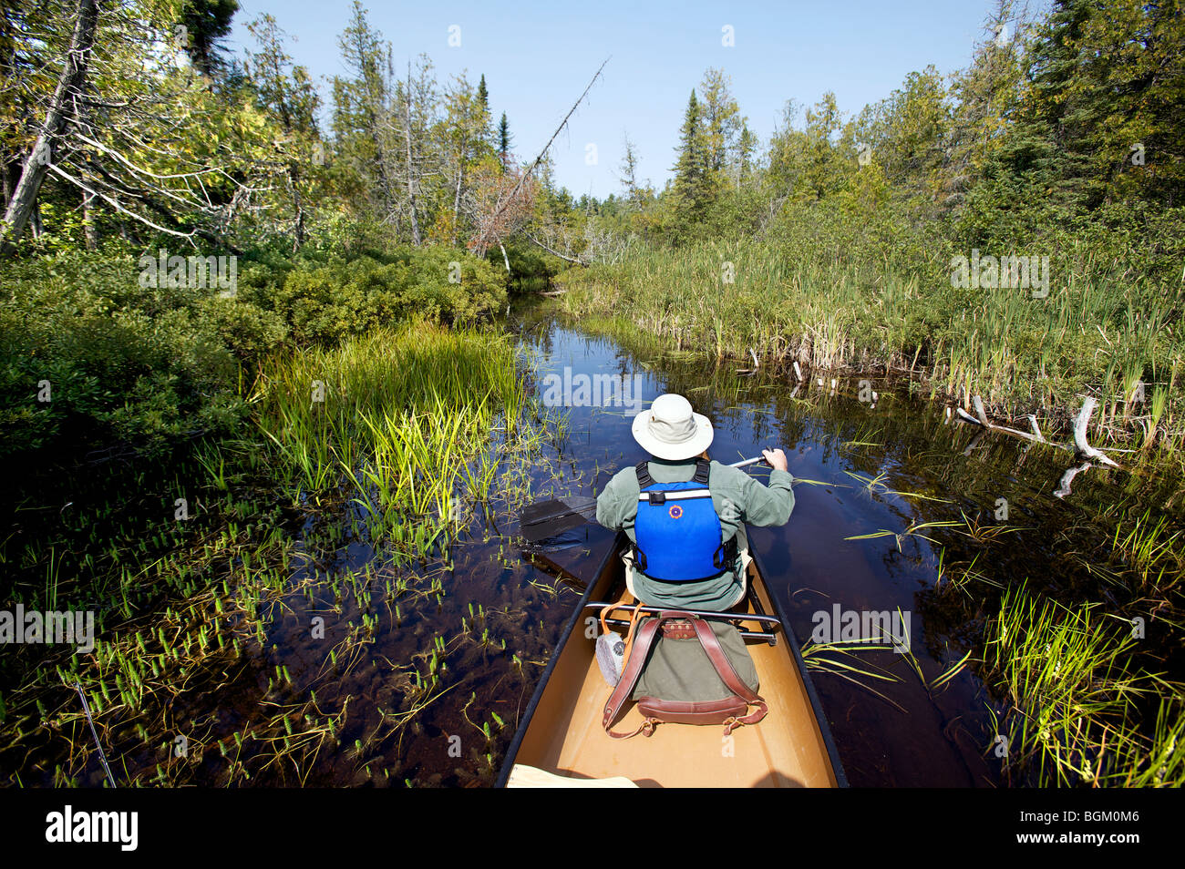 An elderly man canoes in the Superior National Forests, Boundary Waters Canoe area during a nice September day. - Stock Image
