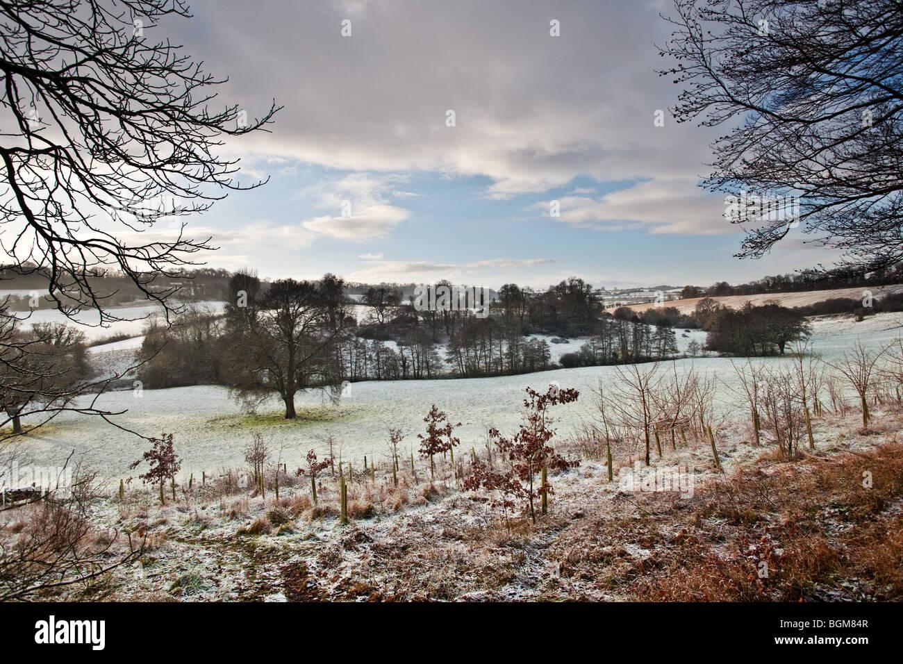 winter landscape - Stock Image