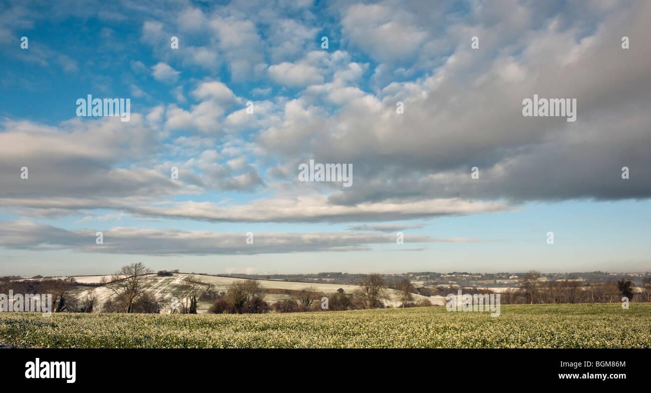 field & hills in winter landscape - Stock Image