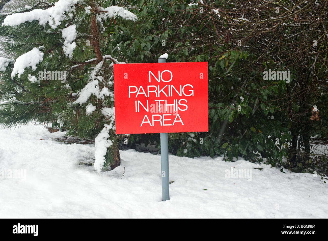 no parking sign in snow - Stock Image