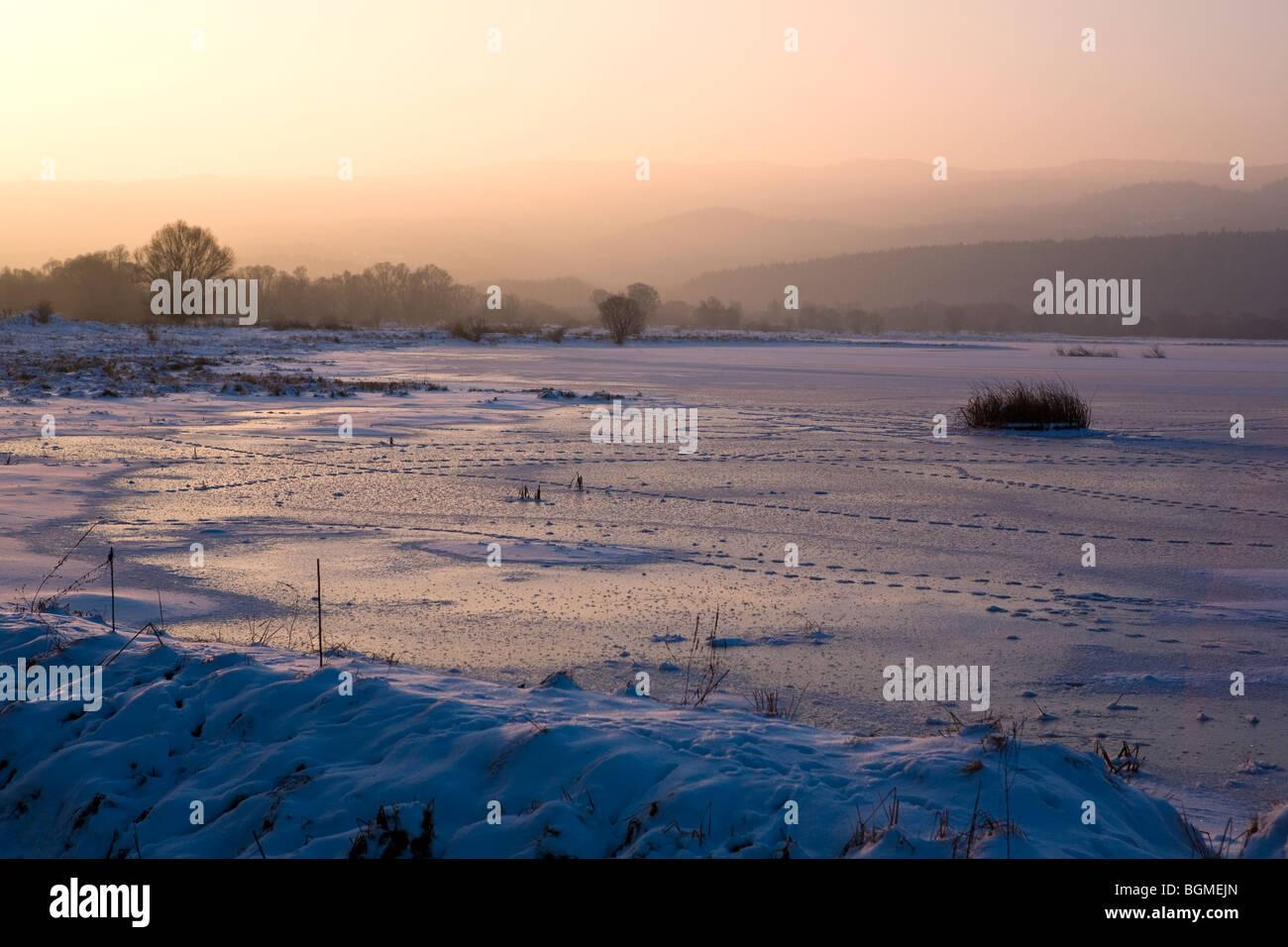 Winter scene, Iskar dam frozen, animal footprints on the ice Stock Photo