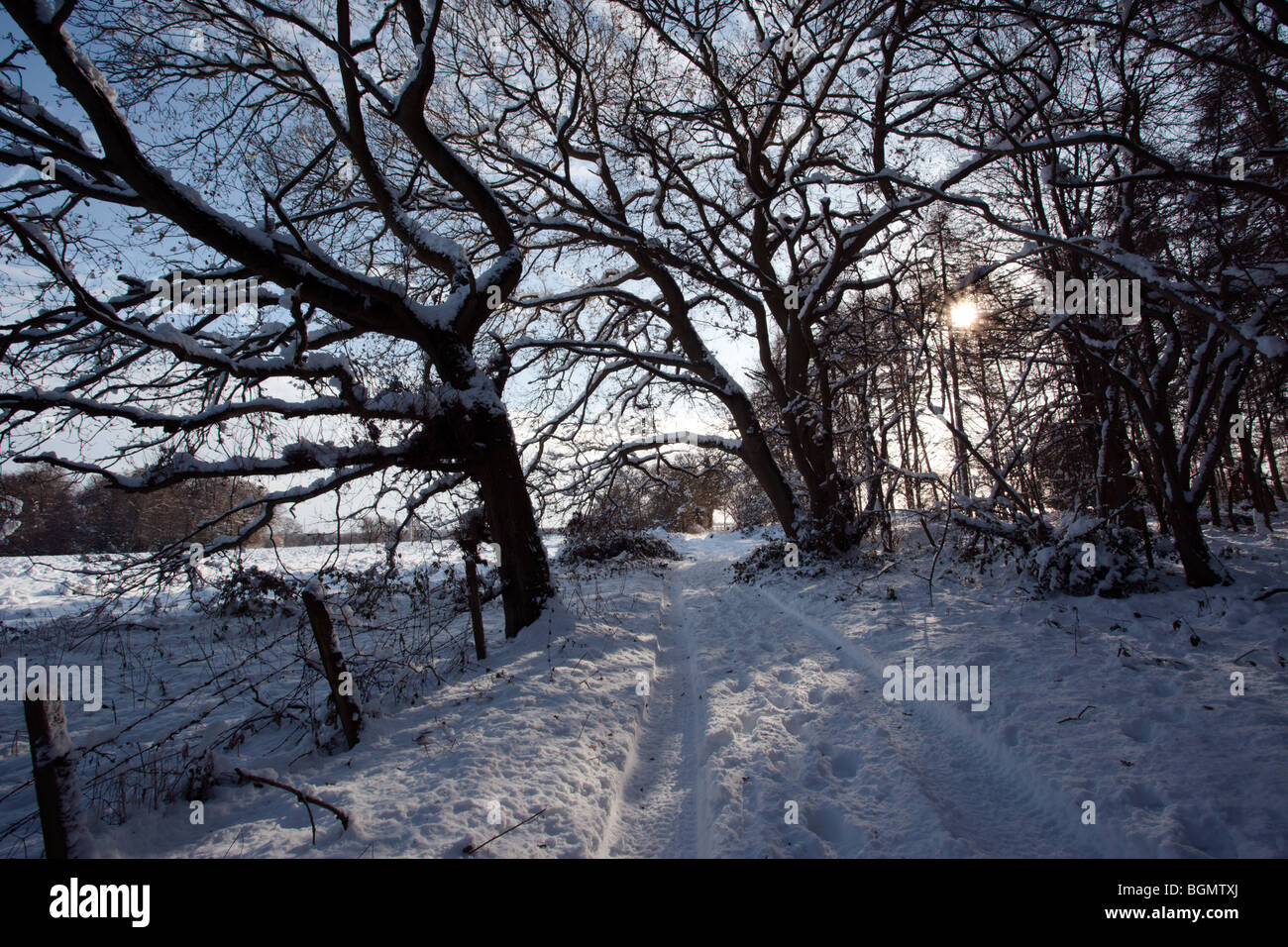 Rural snow scene during the great 2010 freeze Oxfordshire England UK - Stock Image