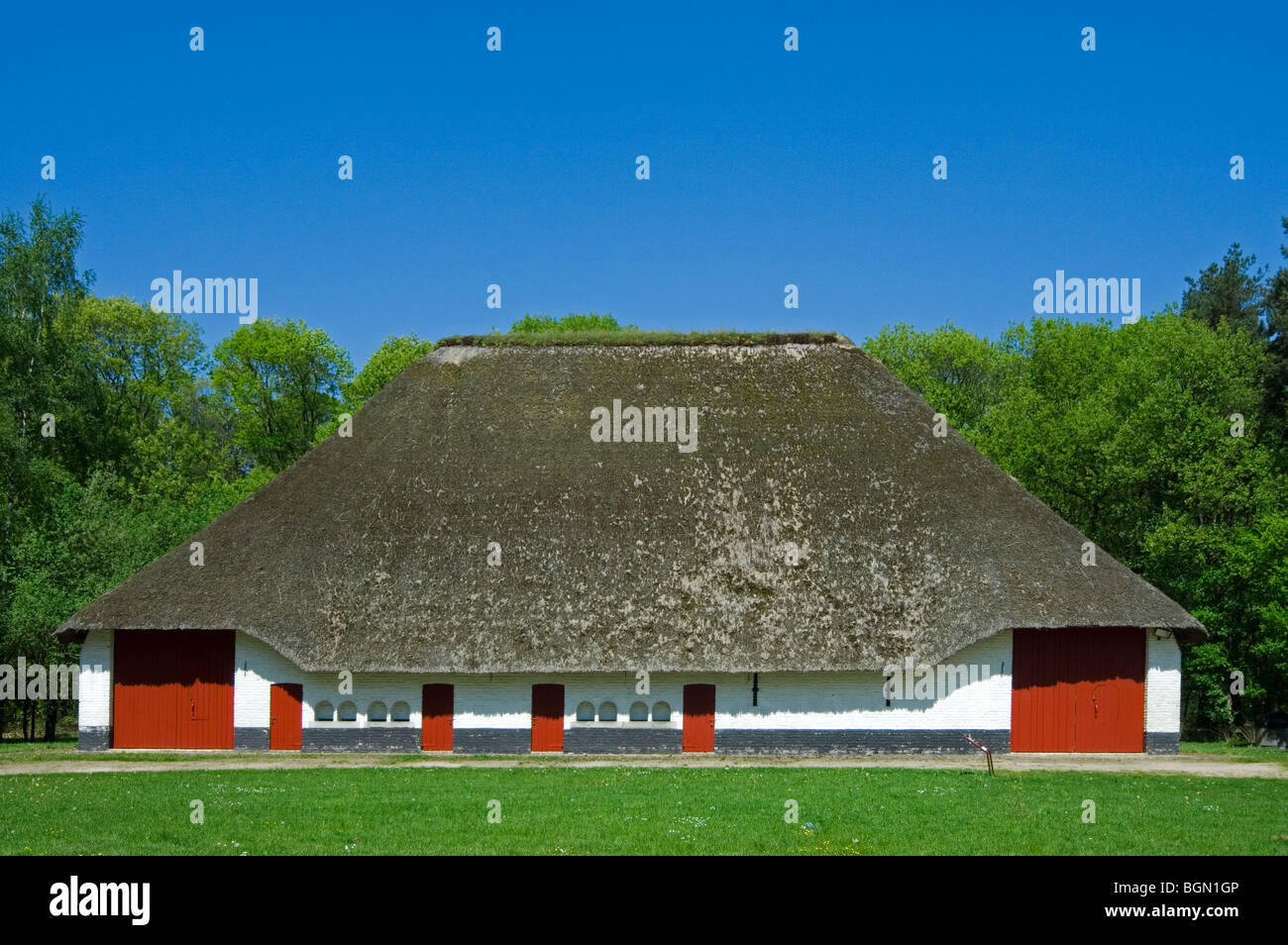 Traditional barn with thatched roof in the open air museum Bokrijk, Belgium Stock Photo