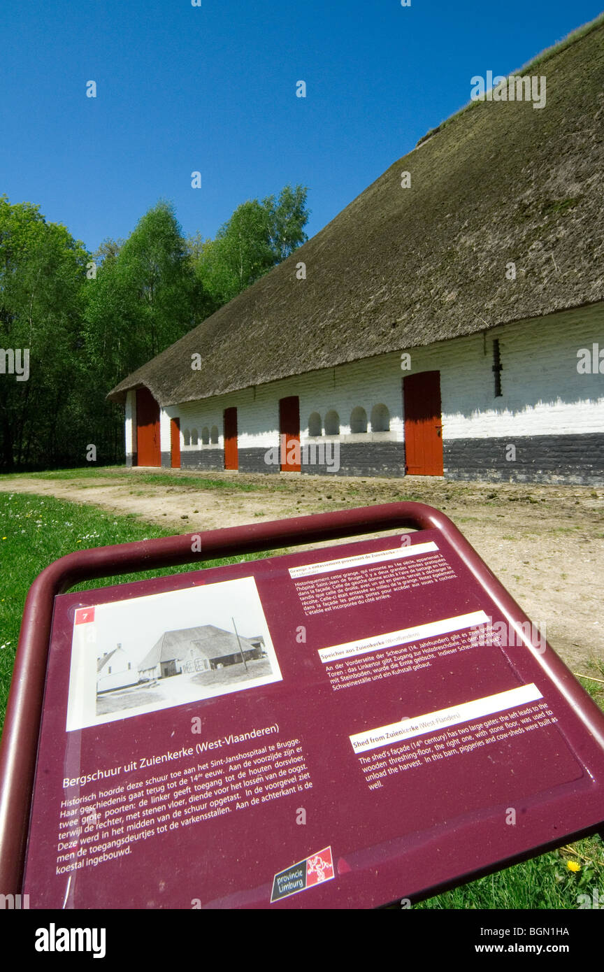 Traditional barn with thatched roof in the open air museum Bokrijk, Belgium - Stock Image