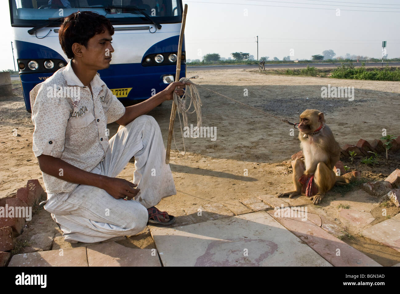 trainer with a monkey waiting to attract tourists - Stock Image