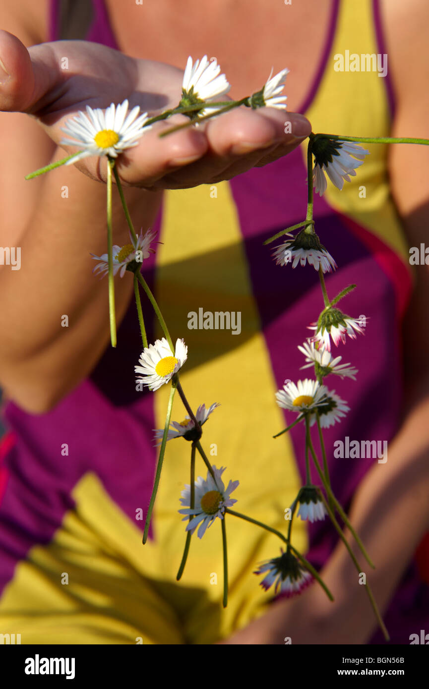 Daisy chain being made - Stock Image