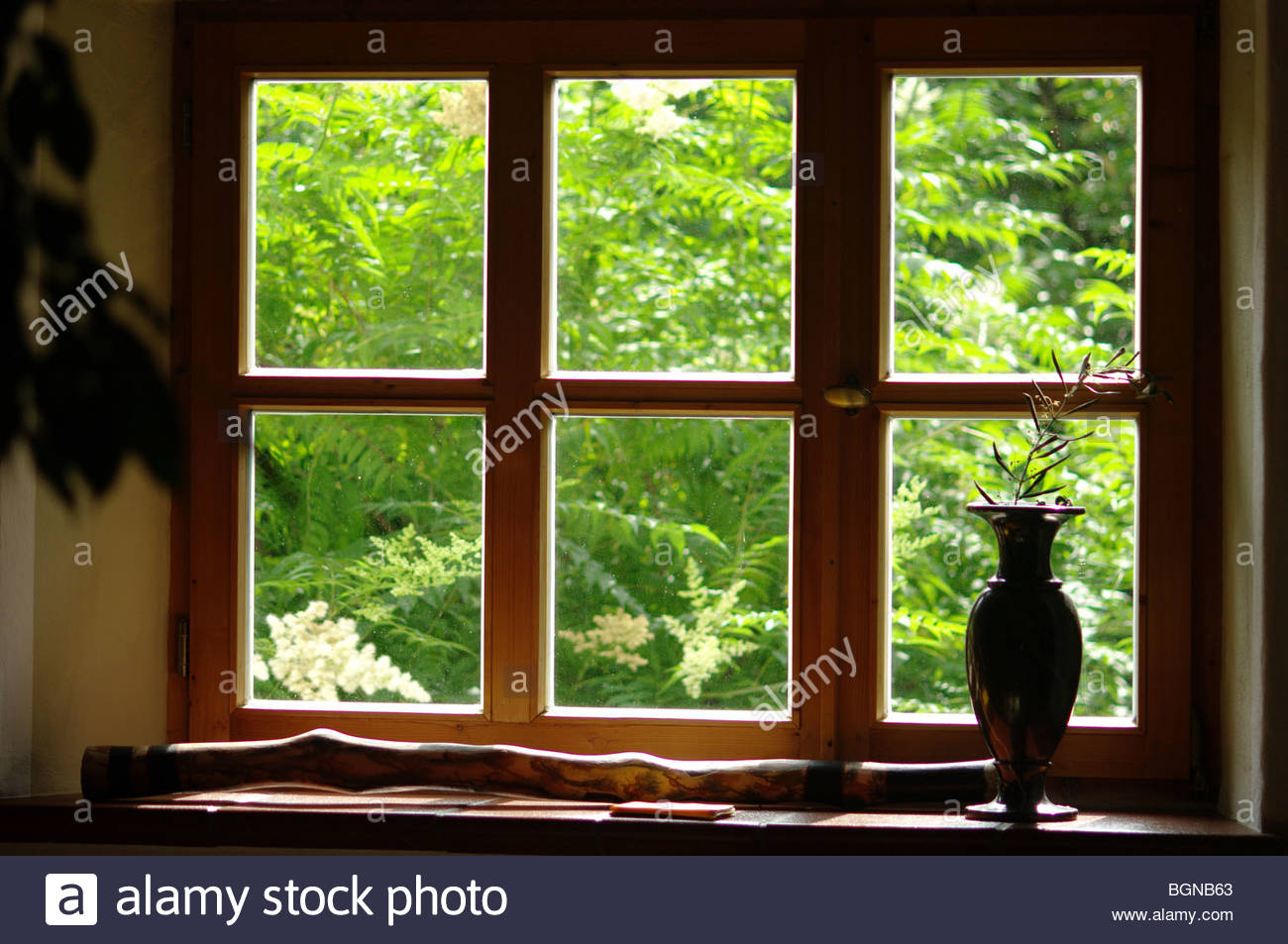Window with a flower pot close up window pane - Stock Image