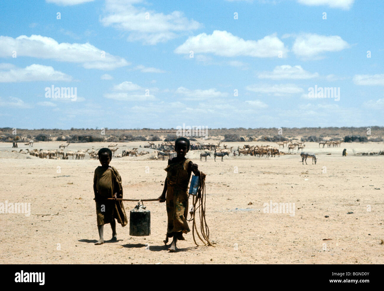 Two children carrying a tin of water in the drought stricken region of east Ethiopia - Stock Image