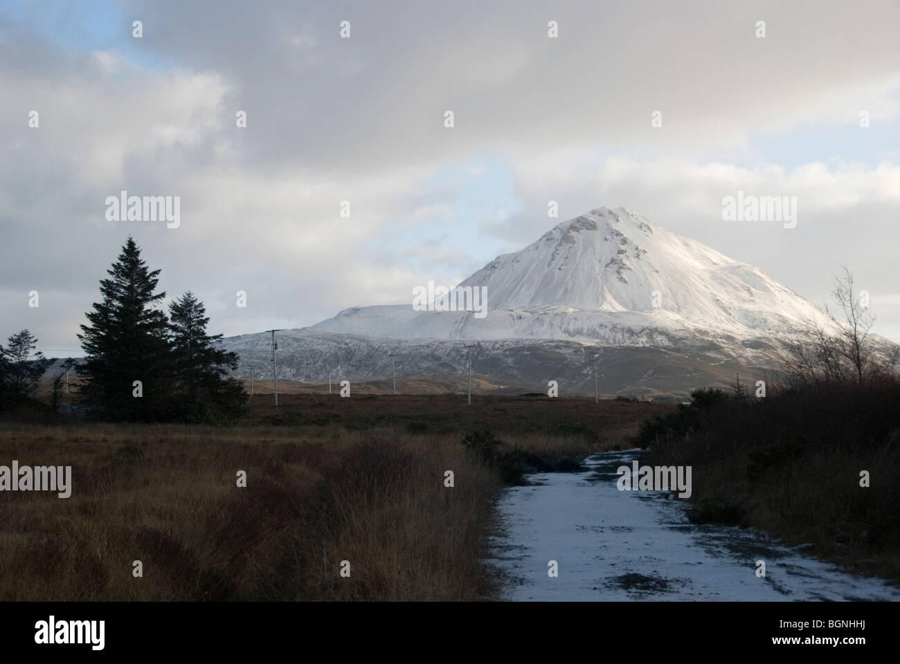 Snow covered mount Errigal Donegal - Stock Image