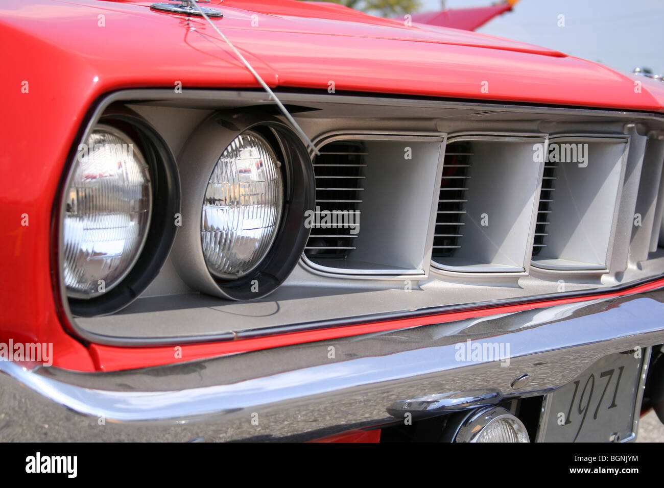 Cuda Stock Photos & Cuda Stock Images - Alamy