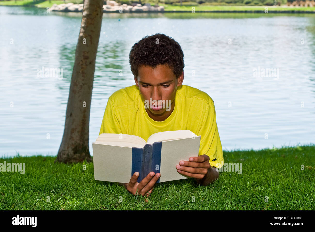 young person 16-17 year old teenage boy young man relaxing relaxes reading in park under tree shade front view  Stock Photo