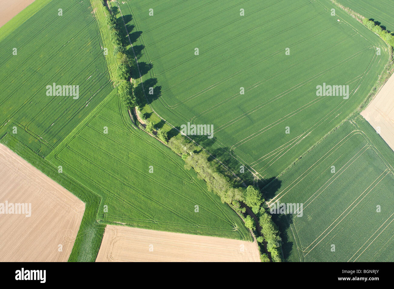 Agricultural area with fields, grasslands and hedges from the air, Belgium Stock Photo