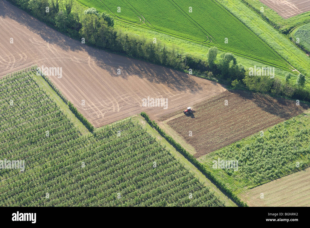 Tractor in agricultural area with fields, grasslands and hedges from the air, Belgium - Stock Image