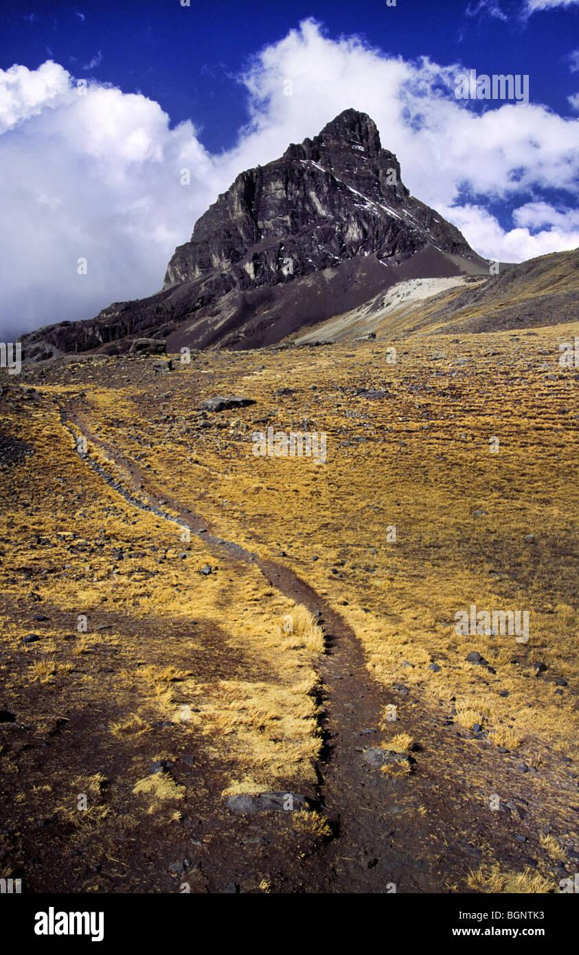 Mountain trail. Cordillera real, Bolivia. - Stock Image