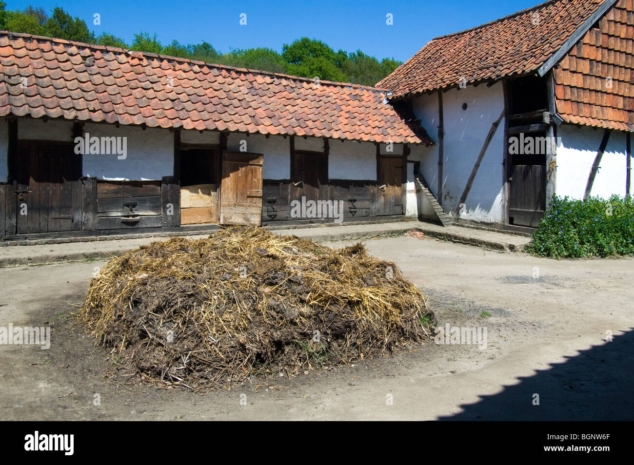 Dunghill / dungheap with manure at the inner courtyard of traditional farm in the open air museum Bokrijk, Belgium Stock Photo