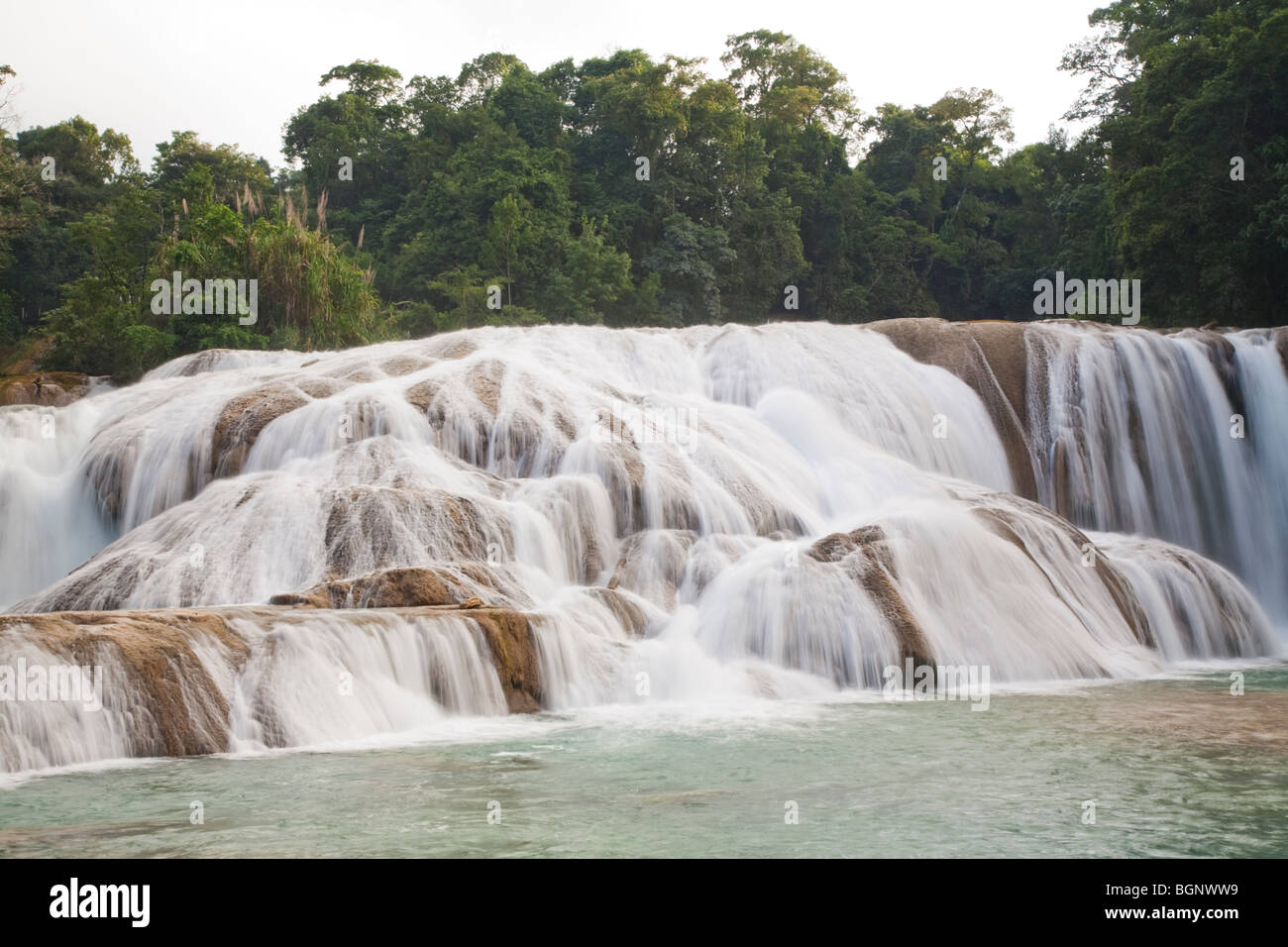 Agua Azul jungle waterfalls and rapids in Chiapas Mexico Stock Photo
