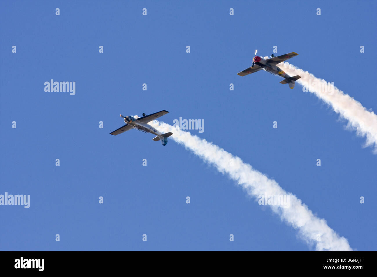 The Cossacks, aerobatic display team flying Yak 52's at RAF Leuchars Airshow 2009, Fife, Scotland - Stock Image