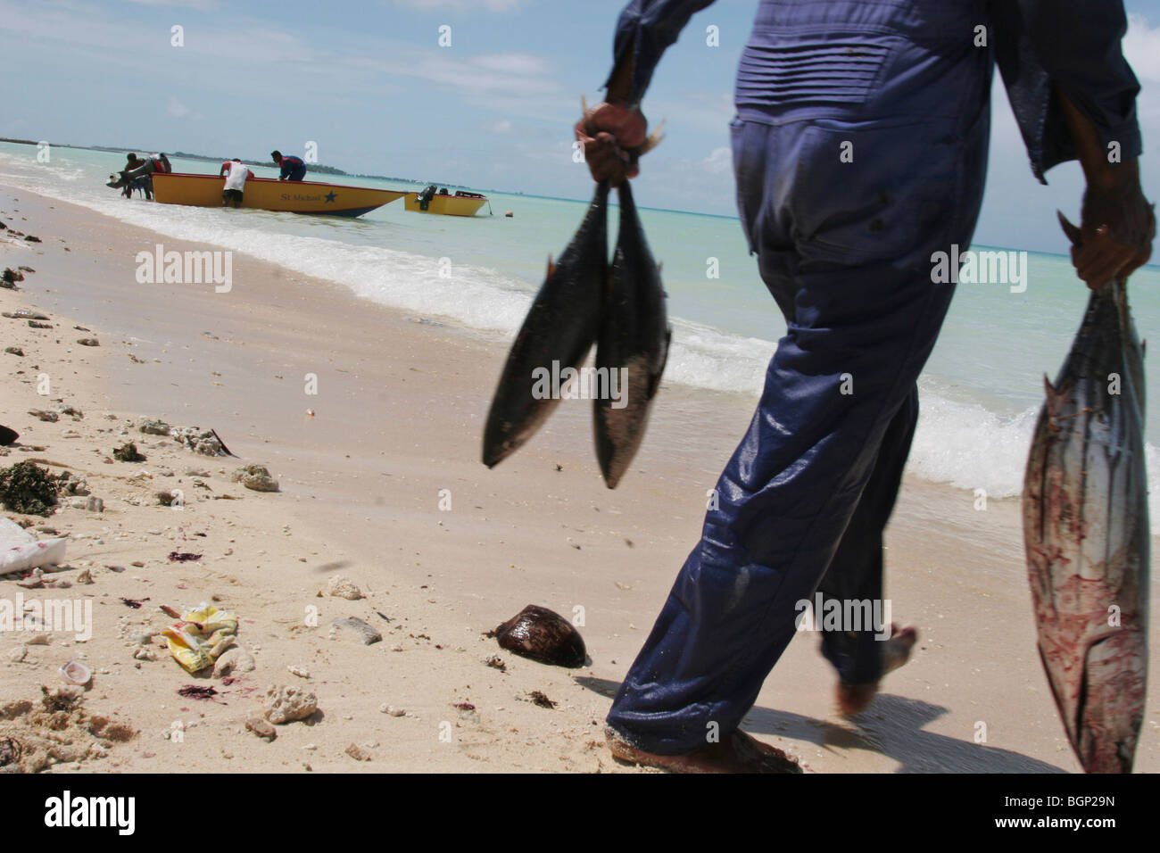 Fishermen with their catch of fish, on the beach, on the island of Kiribati. - Stock Image