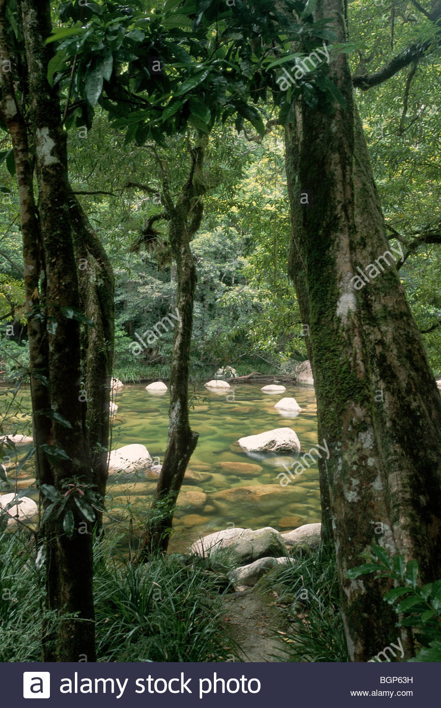 The Mossman River, seen through a gap in the trees at Mossman Gorge, Queensland , Australia. - Stock Image