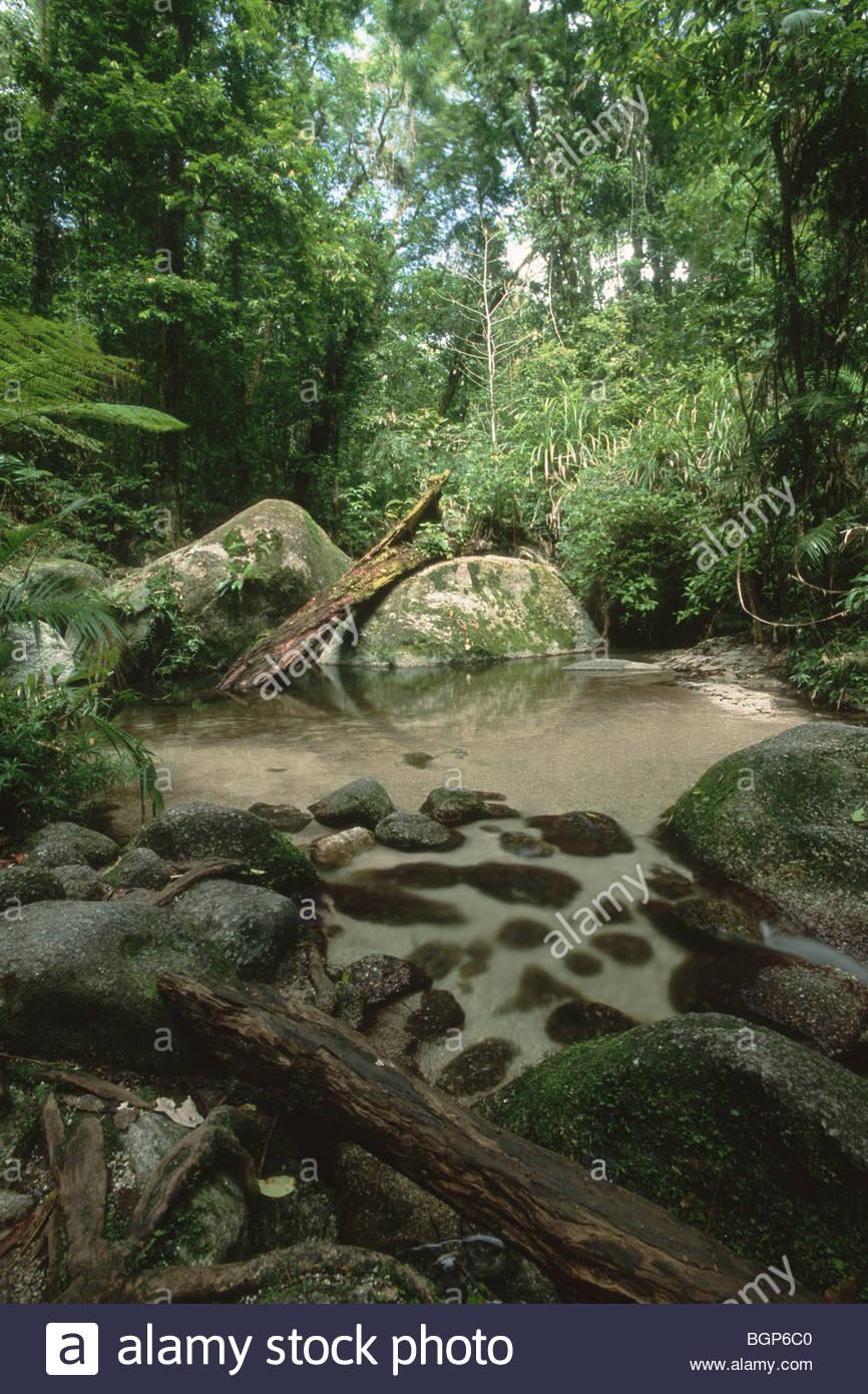 A large boulder blocks a small stream at Mossman Gorge, Queensland, Australia - Stock Image