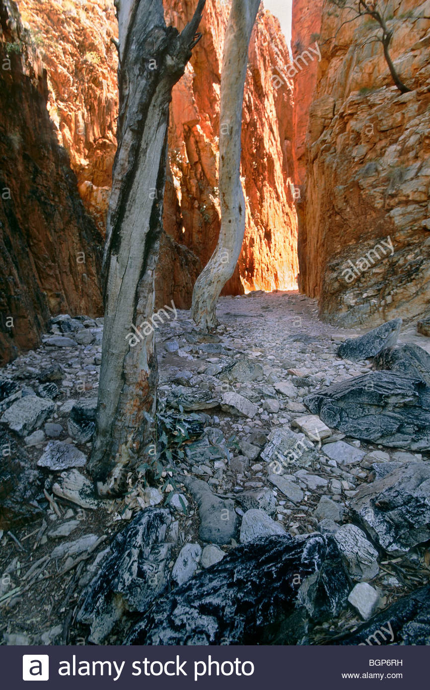 At the right time of day the sun moves in to the correct position to light Standley Chasm, in the Northern Territory, - Stock Image