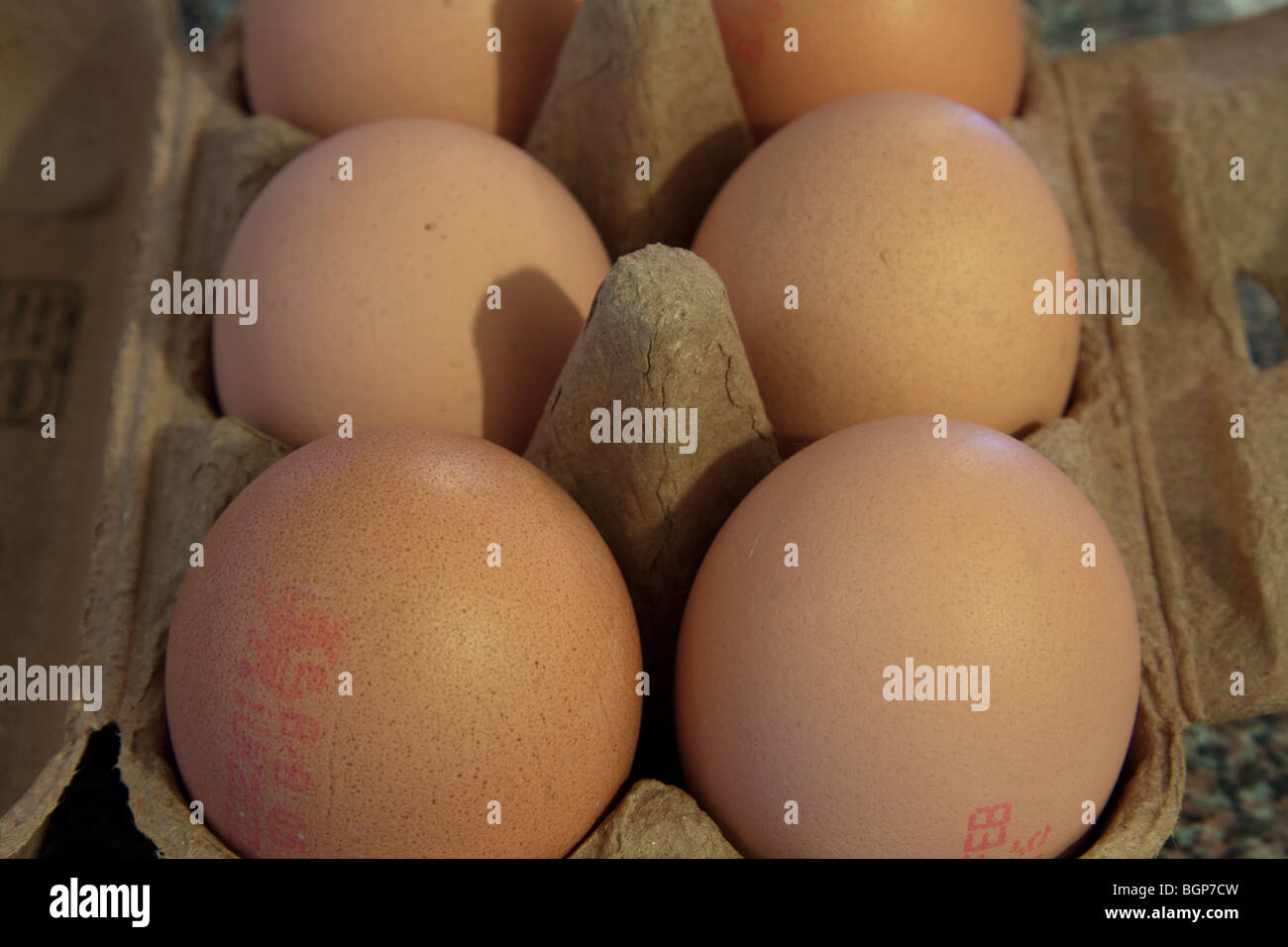 A box of six,6, free range chicken eggs Stock Photo