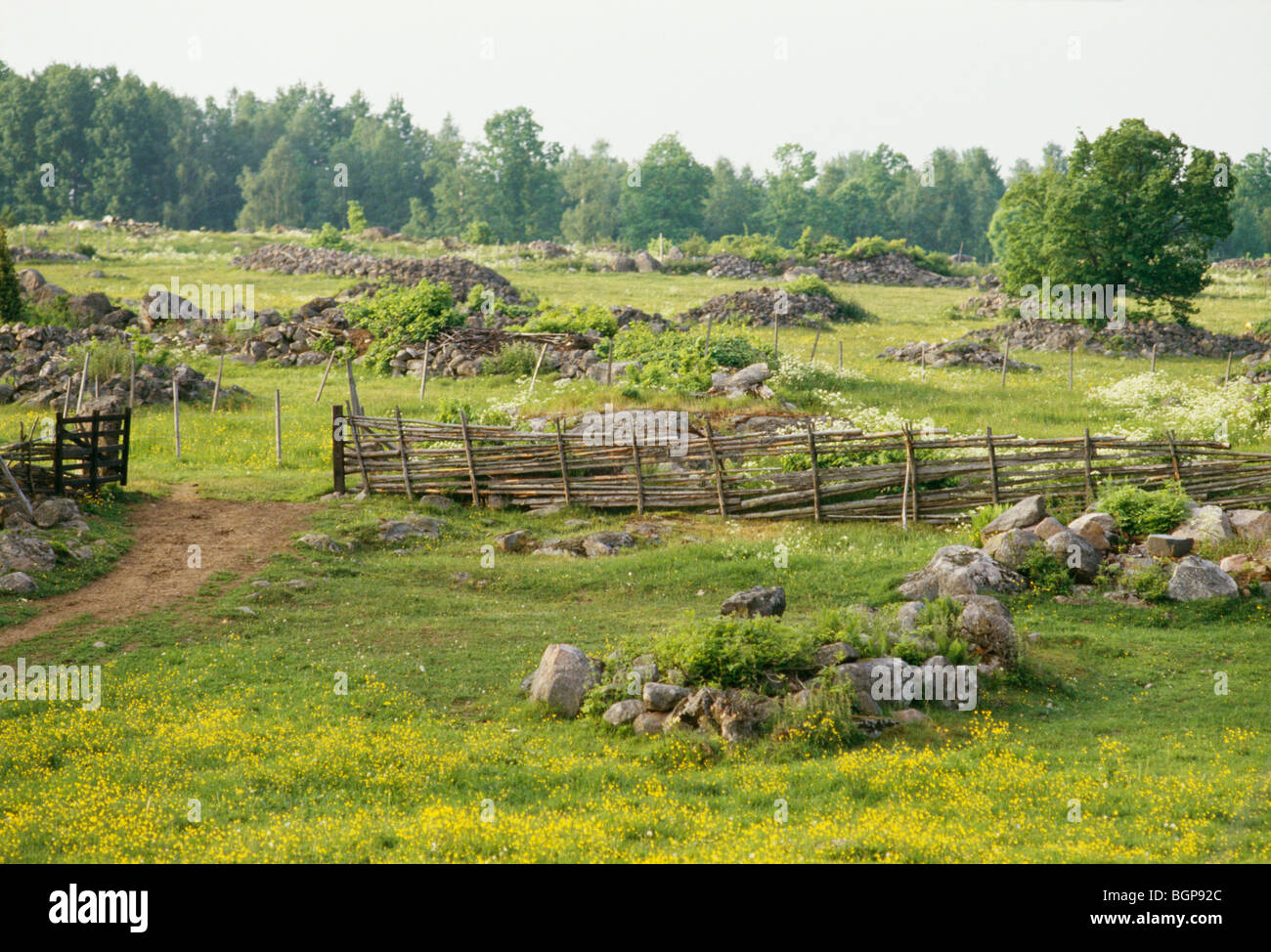 Mound of stones and pastureland, Smaland, Sweden. Stock Photo