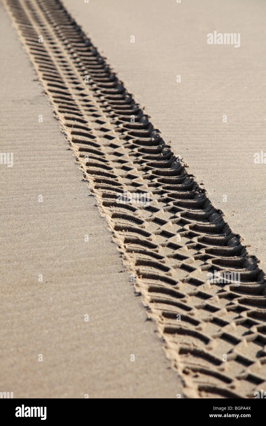 Vehicle tracks on a beach damaging the environment - Stock Image