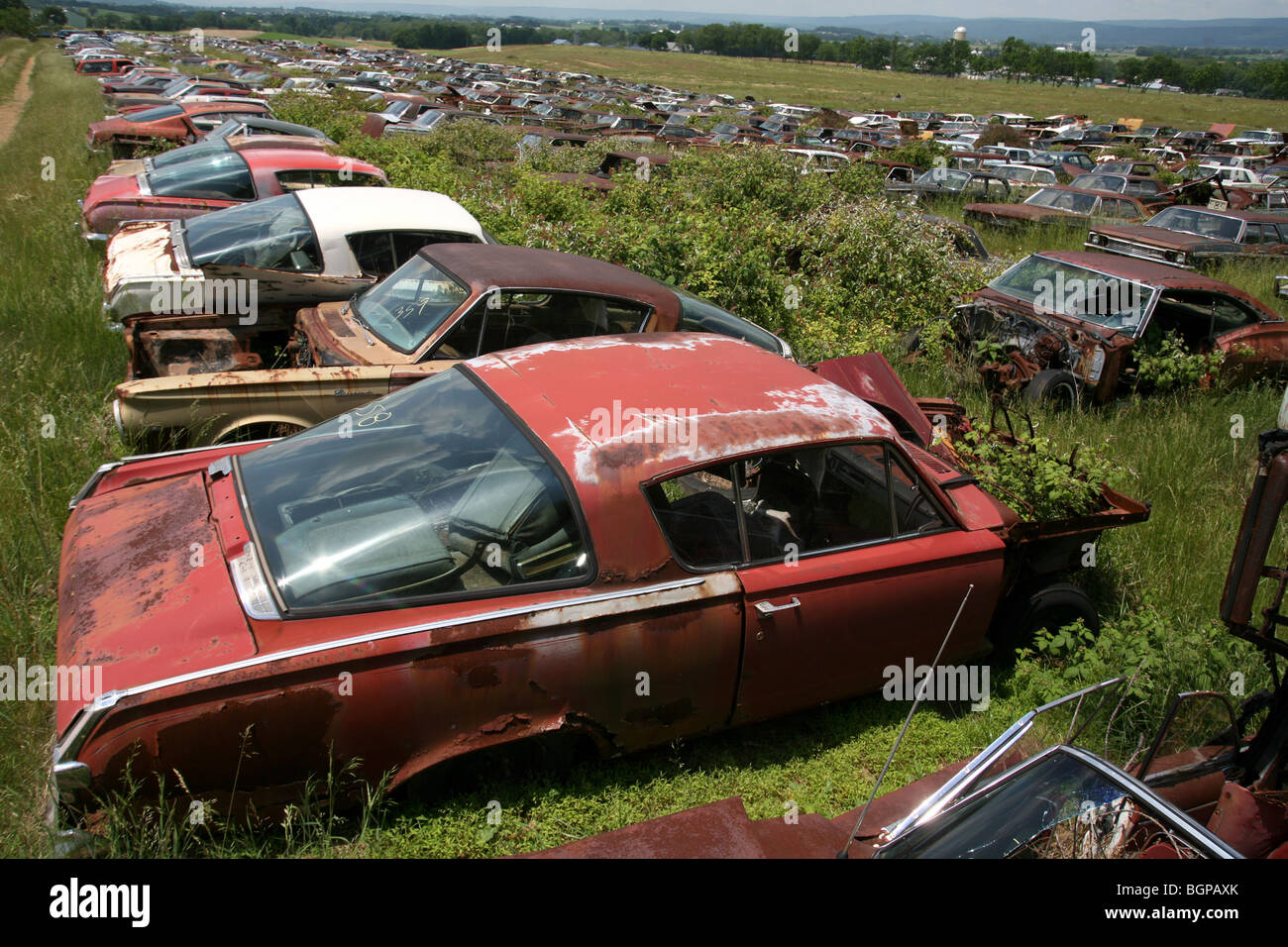 Cars Junk Yards Stock Photos & Cars Junk Yards Stock Images - Alamy