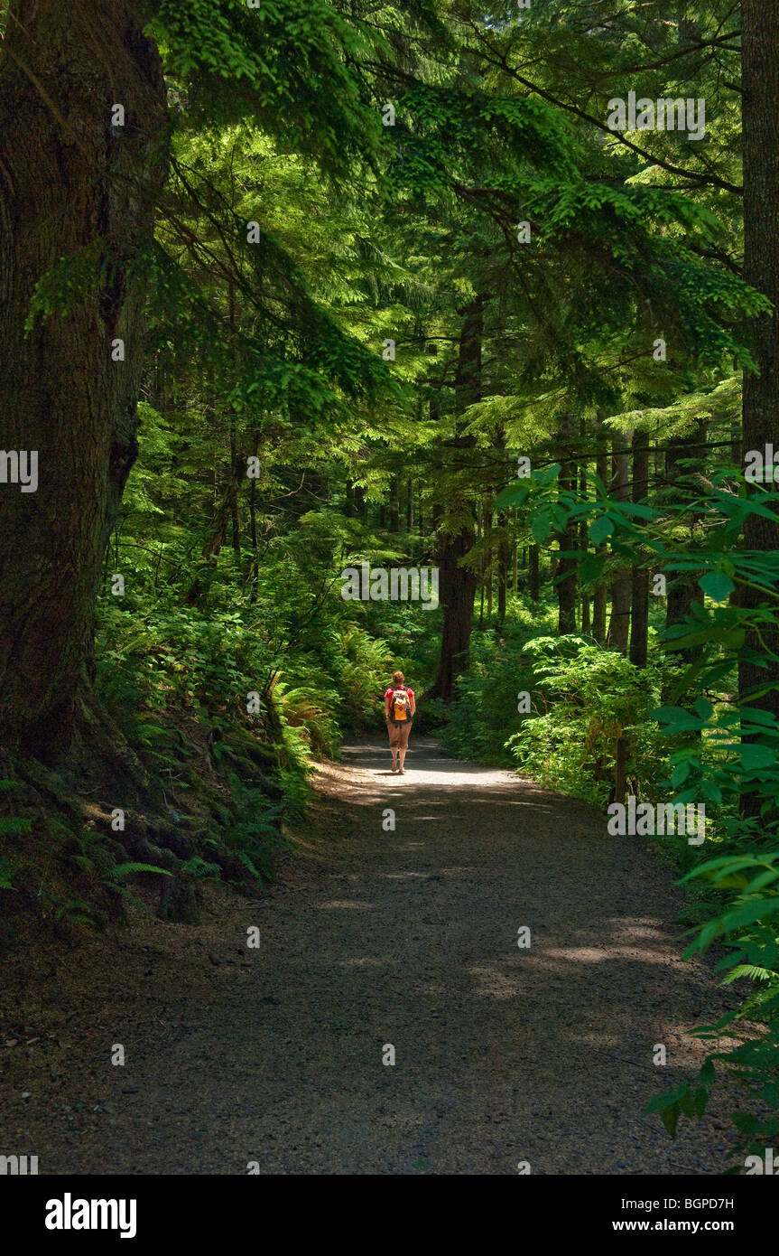 Hiker on trail through forest to Short Sands Beach at Oswald West State Park, Oregon Coast. - Stock Image