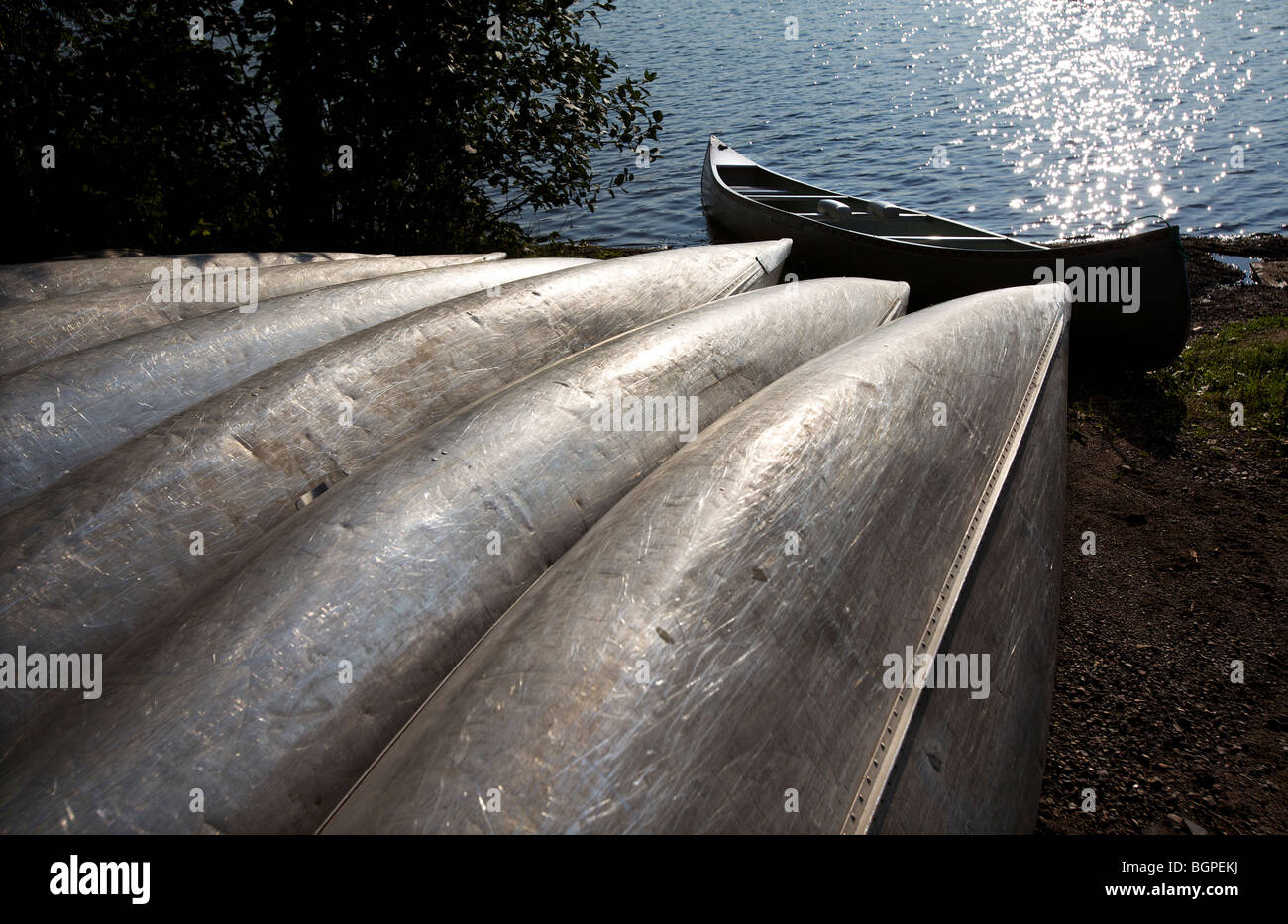 Aluminum Canoes lined up along the shore of a northern Minnesota lake. - Stock Image