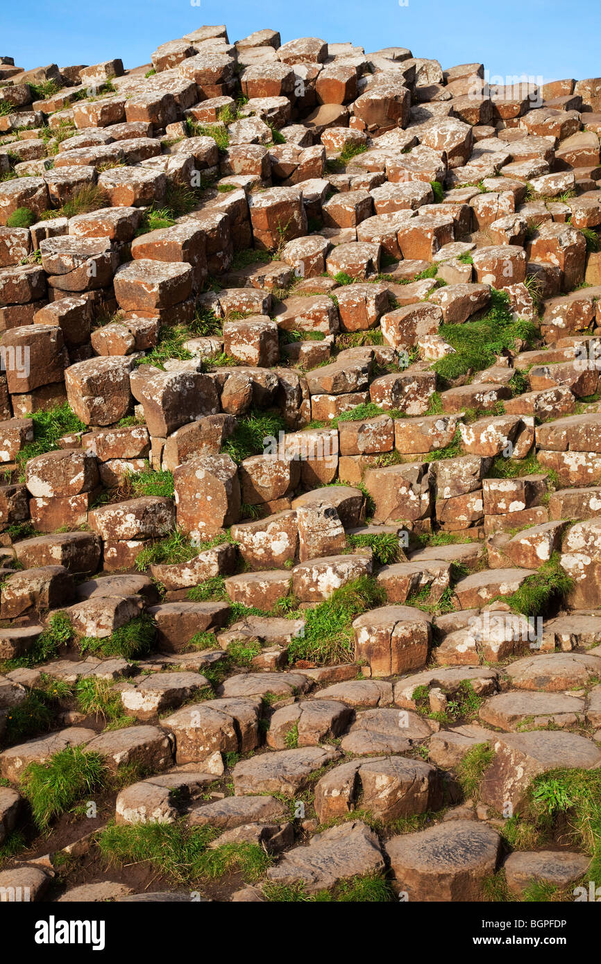 Red basaltic prisms columns at the Giant's Causeway Antrim Northern Ireland a natural phenomena and a world - Stock Image