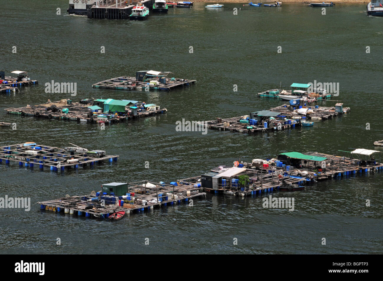 Rafts and wooden dwellings of the fish farm village, looking down from Family Trail 1, Sok Kwu Wan, Lamma Island, - Stock Image