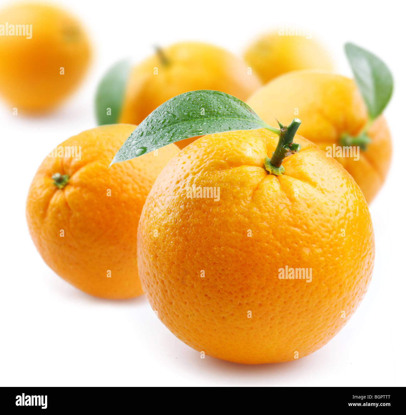 ripe oranges with leaves on white background - Stock Image
