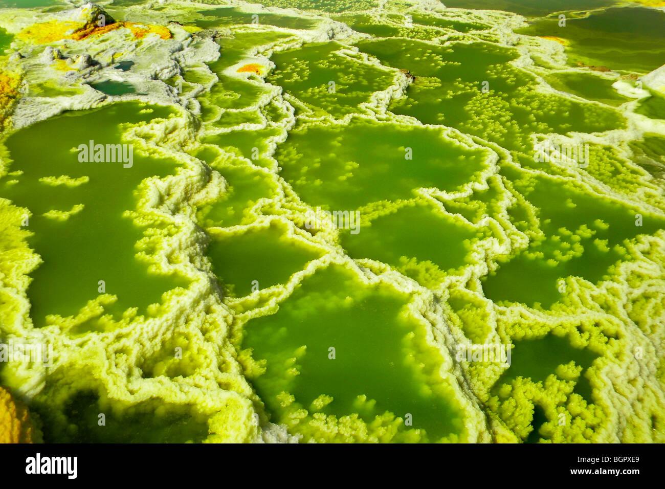 Sulfuric acid pond Dallol is a volcanic, danakil depression, ethiopia  Stock Photo