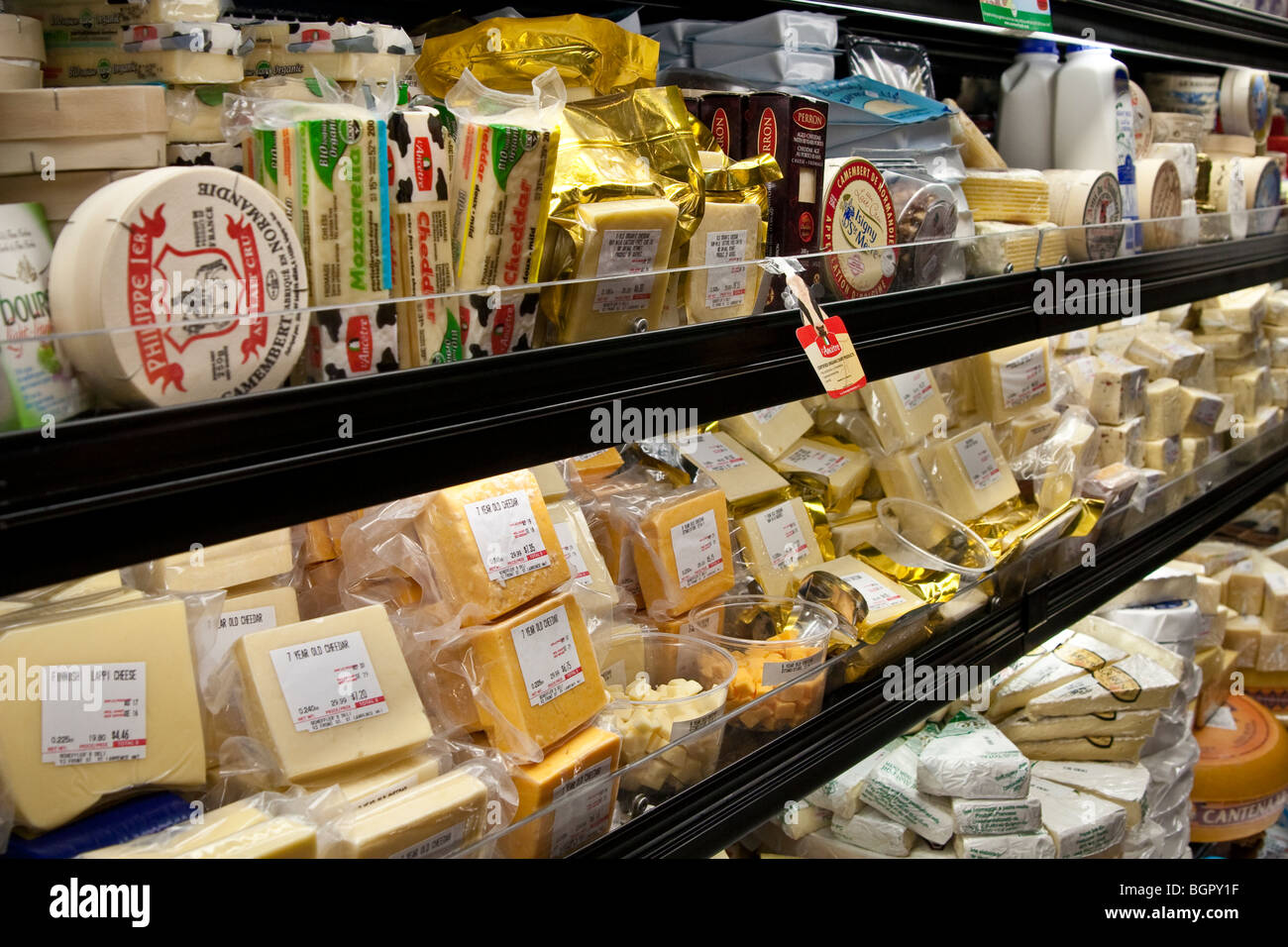 Cheese on display, St. Lawrence Market, Toronto, Canada - Stock Image